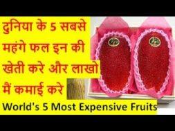दुनिया के 5 सबसे महंगे फल इन की खेती करे और लाखो मैं कमाई करे World's 5 Most Expensive Fruits