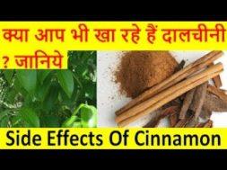 क्या आप भी खा रहे हैं दालचीनी  जानिये? Side Effects of Cinnamon