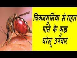 चिकनगुनिया से राहत पाने के कुछ घरेलू उपचार   Home Remedy For chikungunya