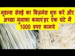 नूडल्स सेवई का बिज़नेस शुरू करें और अच्छा मुनाफा कमाएं  हर एक घंटे मै 1000 रुपए कामये  Noodles,Sevai