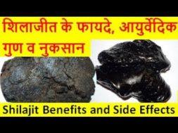 शिलाजीत के फायदे, आयुर्वेदिक गुण व नुकसान Shilajit Benefits and Side effects