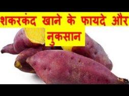 शकरकंद के फायदे और नुकसान Sweet Potato Benefits And Side Effects