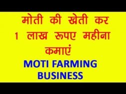 Moti Business earn Good Income by Investing in Moti Farming Business