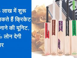 Start Cricket Bat Making Business and earn good income