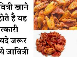 Amazing Health Benefits Of Mace Spice Javitri जावित्री खाने के फायदे