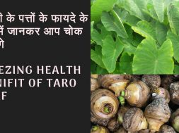 Amezing health benifit of taro leaf | Arabi ki sabji aur patto ke fayde