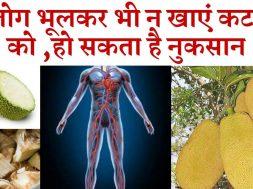 Side effects of eating excess jackfruit (kathal) | भूलकर भी ये लोग न करें कटहल का सेवन