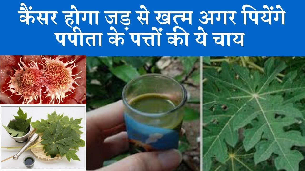 Best home remedy for cancer | कैंसर होगा जड़ से खत्म अगर पीयेंगे ये चाय