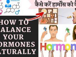 Wonderful Home Remedies For Hormonal Imbalance कैसे ठीक करें हार्मोन असंतुलन को