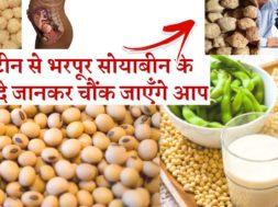 Soybean health benefits  | हाई प्रोटीन से भरपूर सोयाबीन के 6 फायदे