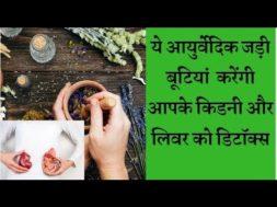 Best ayurvedic herbs will detox the kidney and liver किडनी व लिवर को डिटॉक्स करेंगी  ये जड़ी बूटिया