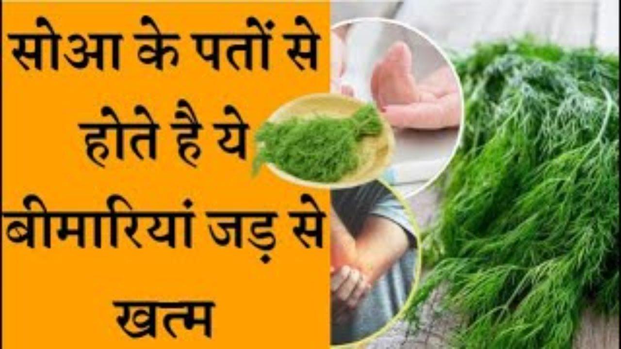डायबिटीज और गठिया का अचूक इलाज सोआ के पत्ते Benefits of dill leaves