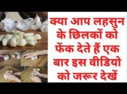 Benefits of garlic peel लहसुन के छिलके बेकार नहीं बेहद गुणकारी है