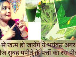 Papaya leaves juice Benefits || पपीता के पत्ते किसी अमृत से कम नहीं ,खासी ,कमजोरी ,जोड़ो में दर्द