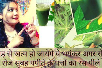 Papaya leaves juice Benefits    पपीता के पत्ते किसी अमृत से कम नहीं ,खासी ,कमजोरी ,जोड़ो में दर्द