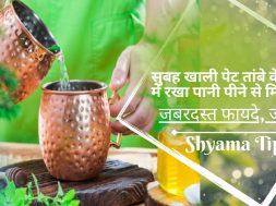 खाली पेट तांबे के बर्तन में रखा पानी पीने के फायदे | Health Benefits of Drinking Water Copper Vessel