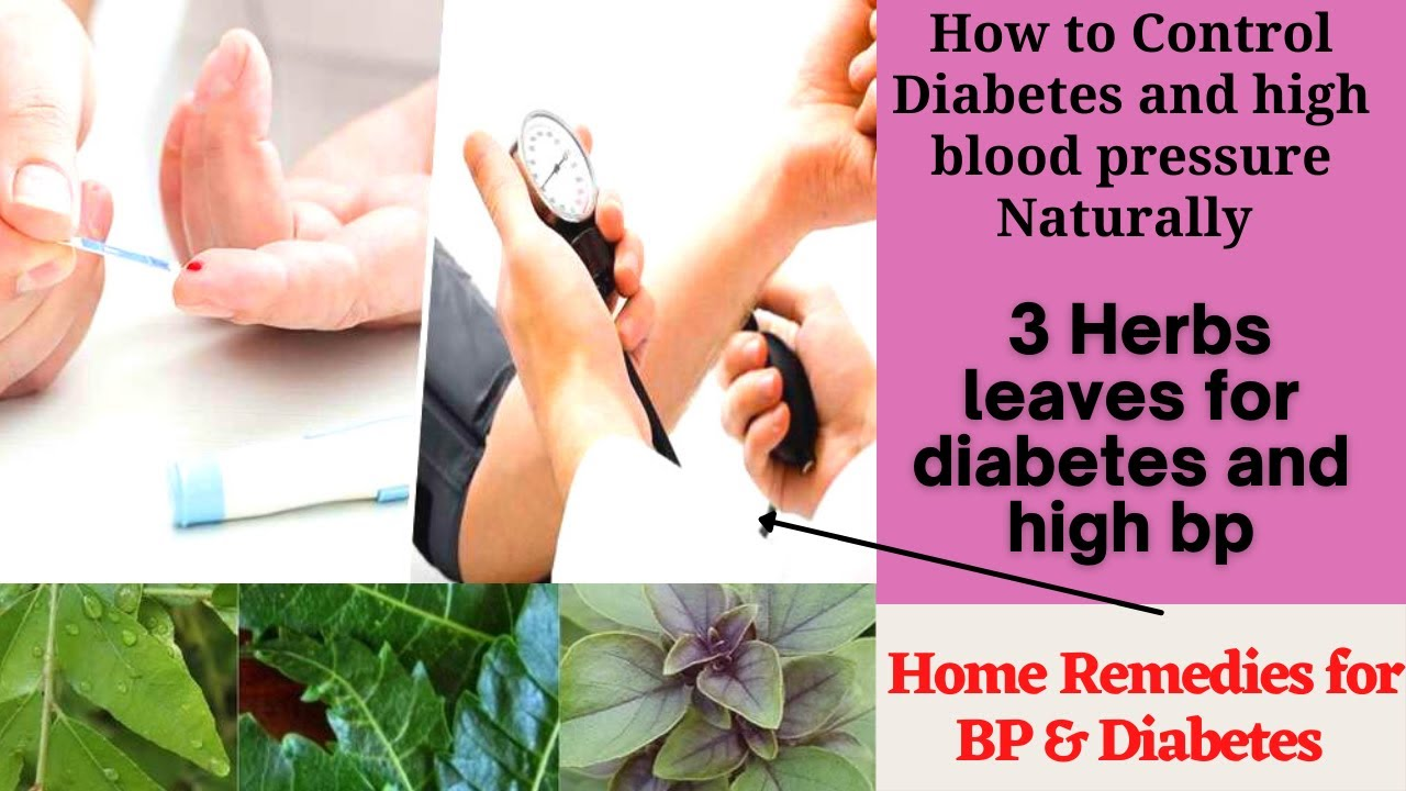 How to Control Diabetes Naturally | 3 Leaves Cantrol Diabetes and High Blood Pressure