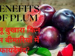 Benefits Of Plum(Aaloo Bukhaara) आलू बुखारा खाने के फायदे