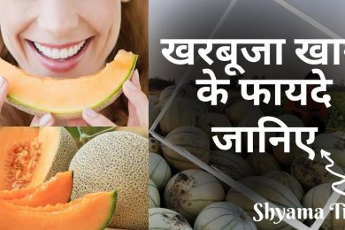 Kharbuja Khane Ke Fayde in Hindi | Health Benefits Of Muskmelon