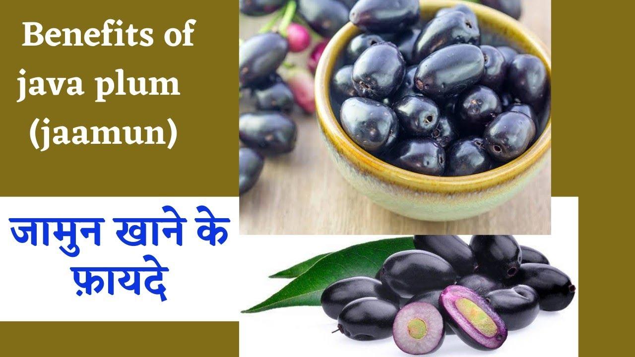 Health Benefits of jaamun ( java plum) जाने जामुन खाने के फ़ायदे
